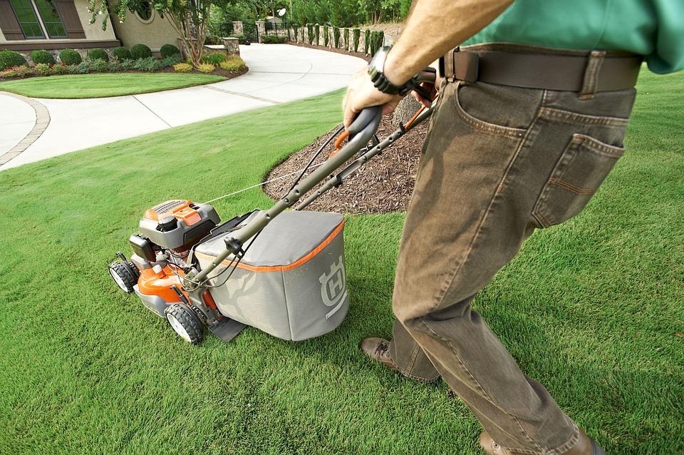 Quels sont les outils d'un bon jardinier ?
